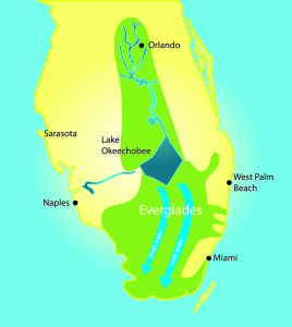 Guest commentary: Water storage is the heart of Everglades restoration