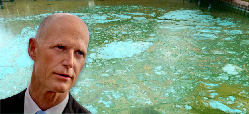 Letter to Governor Scott: Can You Smell It Now?