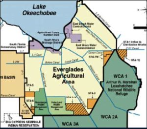 Analysis: EAA farmers refuse to sell land for Lake O discharges plan